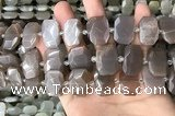 CNG7886 13*18mm - 15*25mm faceted freeform moonstone beads
