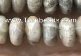 CRB5336 15.5 inches 5*8mm rondelle fossil coral beads wholesale