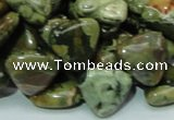 CRH32 15.5 inches 16*16mm triangle rhyolite beads wholesale