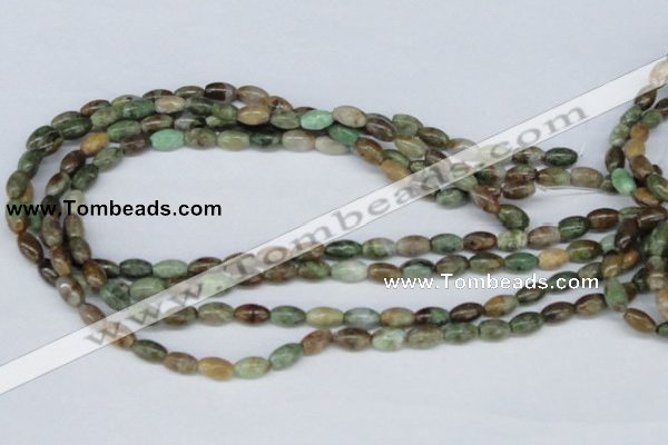 CRJ14 15.5 inches 6*10mm rice african prase jasper beads wholesale