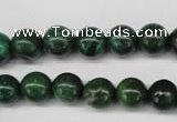 CRJ303 15.5 inches 10mm round African prase jasper beads wholesale