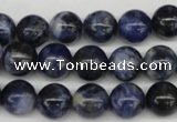 CRO239 15.5 inches 10mm round sodalite gemstone beads wholesale
