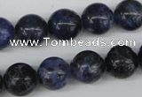 CRO344 15.5 inches 12mm round sodalite gemstone beads wholesale