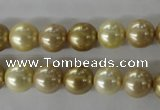 CSB1069 15.5 inches 10mm round mixed color shell pearl beads