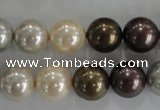 CSB1088 15.5 inches 12mm round mixed color shell pearl beads