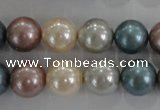 CSB1094 15.5 inches 12mm round mixed color shell pearl beads