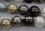 CSB1121 15.5 inches 14mm round mixed color shell pearl beads
