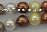 CSB1132 15.5 inches 14mm round mixed color shell pearl beads