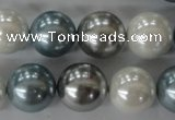 CSB1151 15.5 inches 16mm round mixed color shell pearl beads
