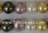 CSB156 15.5 inches 12*15mm – 13*16mm oval mixed color shell pearl beads