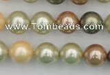 CSB359 15.5 inches 12mm round mixed color shell pearl beads