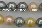 CSB377 15.5 inches 14mm round mixed color shell pearl beads