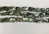 CSB4155 15.5 inches 13*18mm rectangle abalone shell beads wholesale