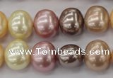 CSB699 15.5 inches 13*15mm oval mixed color shell pearl beads