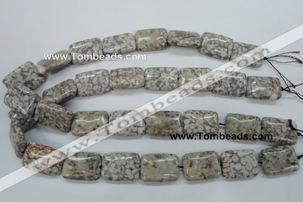 CSF09 15.5 inches 18*25mm rectangle shell fossil jasper beads