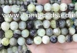 CSJ303 15.5 inches 10mm round serpentine new jade beads wholesale