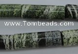 CSJ98 15.5 inches 10*30mm tube green silver line jasper beads