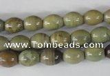 CSL103 15.5 inches 8*10mm rice silver leaf jasper beads wholesale