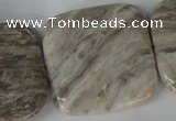 CSL59 15.5 inches 40*40mm square silver leaf jasper beads wholesale