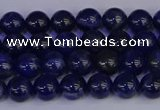 CSO500 15.5 inches 4mm round sodalite gemstone beads wholesale