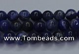 CSO610 15.5 inches 4mm round sodalite gemstone beads wholesale