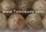 CSS724 15.5 inches 12mm round sunstone beads wholesale