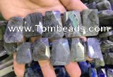 CTD2105 Top drilled 20*28mm - 22*32mm faceted freeform labradorite beads
