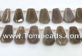 CTD2335 Top drilled 16*18mm - 20*30mm faceted freeform moonstone beads