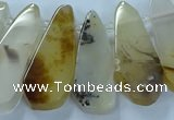 CTD2708 15.5 inches 10*25mm - 18*50mm freeform montana agate beads