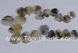 CTD2736 Top drilled 20*25mm - 35*45mm freeform Montana agate beads