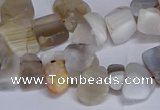 CTD3609 Top drilled 10*14mm - 13*18mm nuggets botswana agate beads