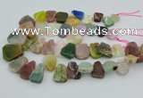 CTD3699 Top drilled 15*20mm - 25*30mm freeform mixed gemstone beads