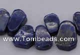 CTD377 Top drilled 10*14mm - 15*20mm freeform lapis lzuli beads