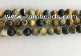 CTE2123 15.5 inches 12mm round golden & blue tiger eye beads