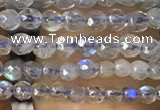CTG1078 15.5 inches 2mm faceted round tiny labradorite beads