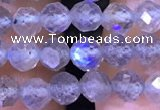 CTG1208 15.5 inches 4mm faceted round tiny labradorite beads