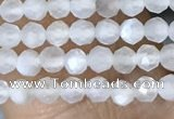 CTG1401 15.5 inches 2mm faceted round white moonstone beads wholesale