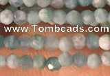 CTG2154 15 inches 2mm,3mm faceted round amazonite gemstone beads