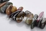 CTO04 15.5 inches 5*13mm freeform natural tourmaline chips beads