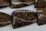 CTW410 15.5 inches 22*30mm twisted bronzite gemstone beads