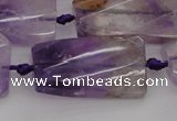 CTW456 20*38mm faceted & twisted rectangle ametrine beads
