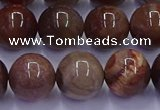 CWJ434 15.5 inches 12mm round wood jasper beads wholesale