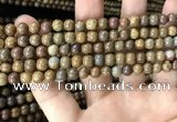 CWJ562 15.5 inches 4mm round wood jasper beads wholesale