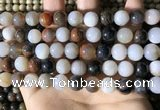 CWJ571 15.5 inches 10mm round Arizona petrified wood jasper beads