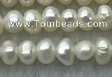 FWP09 14.5 inches 2.5mm - 3mm potato white freshwater pearl strands