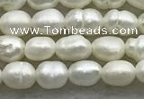 FWP157 14.5 inches 3mm - 4mm rice white freshwater pearl strands