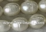 FWP185 15 inches 6mm - 7mm rice white freshwater pearl strands