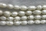 FWP205 15 inches 10mm - 11mm rice white freshwater pearl strands