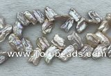 FWP414 Top-drilled 12*16mm - 13*18mm biwa freshwater pearl beads