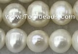 FWP81 15 inches 7mm - 8mm potato white freshwater pearl strands
